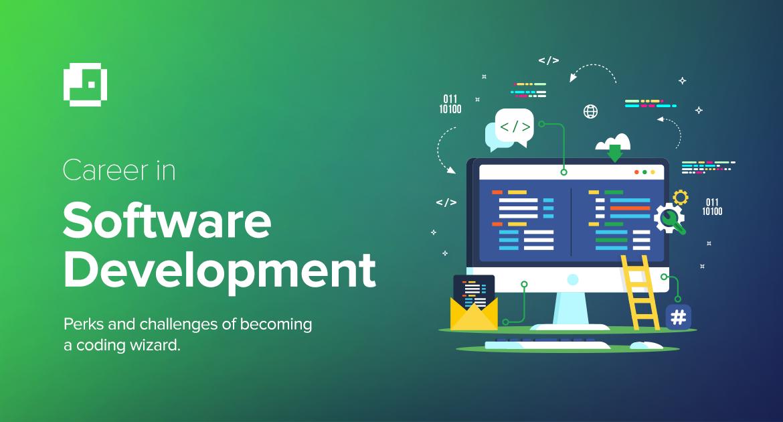 The Software Development Industry in Pakistan